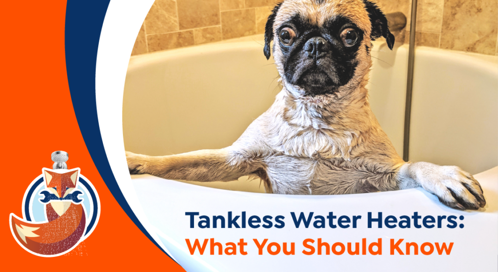 Tankless, Tankless Water Heater